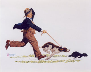 Illustration of Dog chasing cat with man hanging on