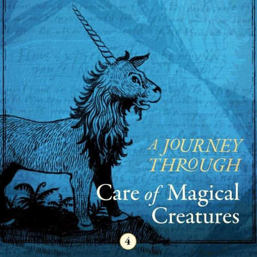 Book Covers Harry Potter A history of magic