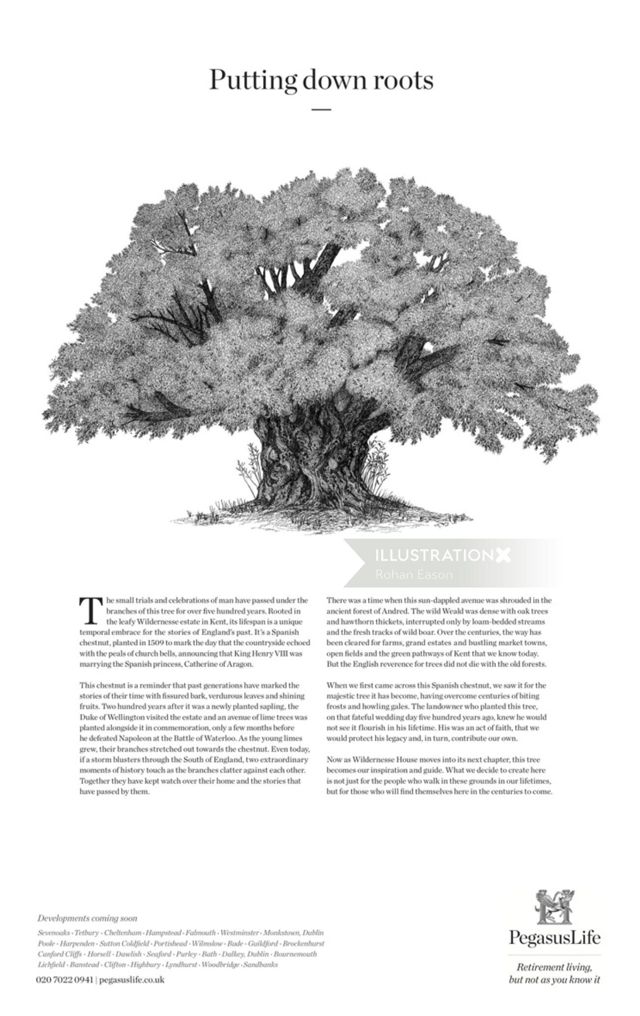 Tree pencil sketch