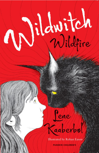 Wildwitch wildfire book cover design
