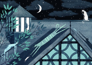 roof, house, cats, cat, mouse, mice, night, dark, midnight