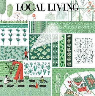 editorial, gardening, growing, allotment, garden, growth, cover, newspaper, magazine