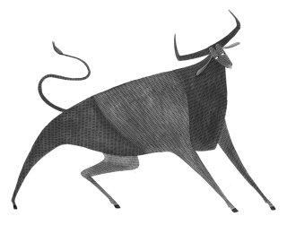 Pencil art of Bull Spain by Rosanna Tasker