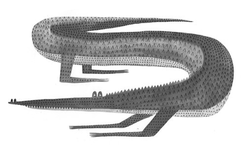 Crocodile illustration by Rosanna Tasker
