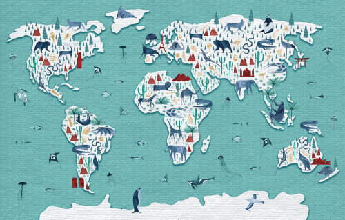 Animals of the world illustration