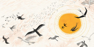 Birds painting by Rosanna Tasker