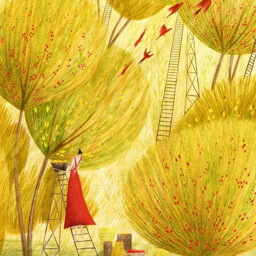 Rosanna Tasker Nature Illustrator from United Kingdom