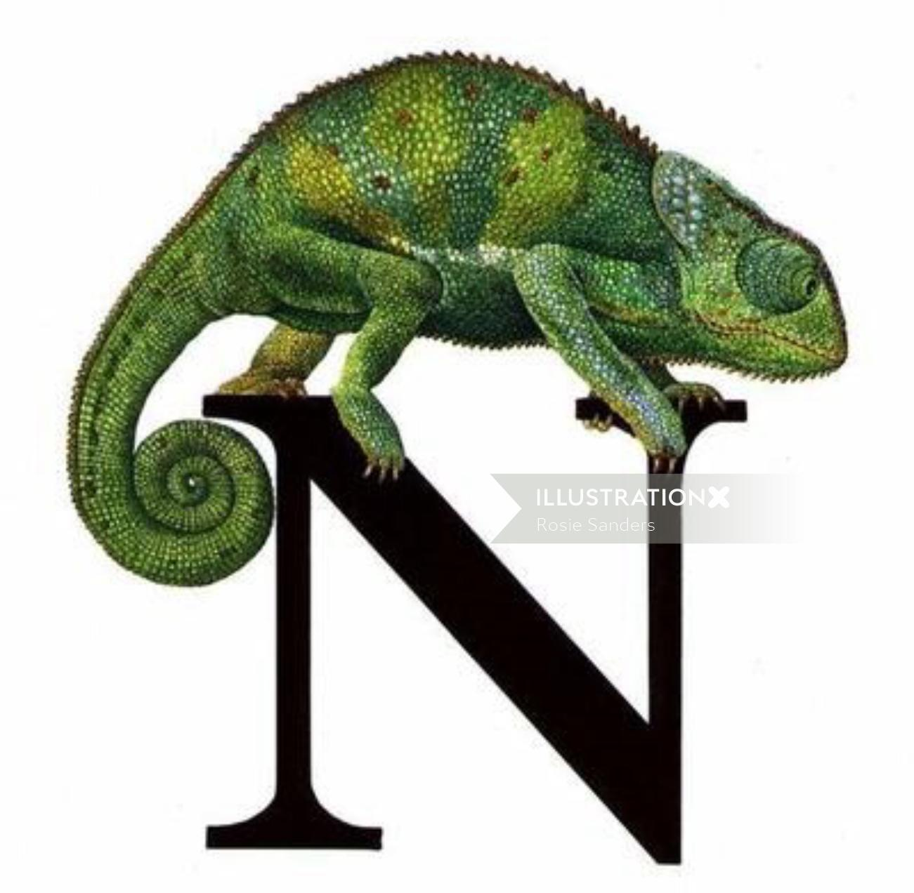 Chameleon illustration by Rosie Sanders
