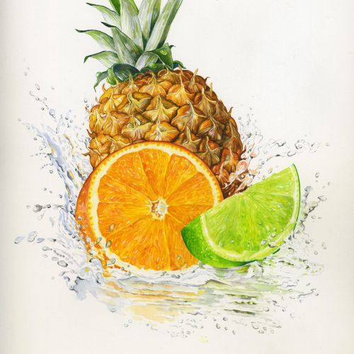Pineapple, Orange and Lemon illustration by Rosie Sanders