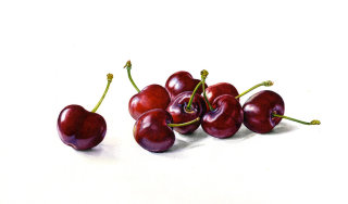 Cherries illustration by Rosie Sanders