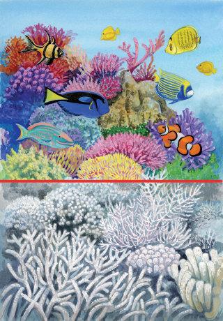 Nature illustration of seaworld underwater life