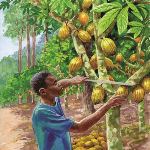 Man cutting off fruits from tree painting