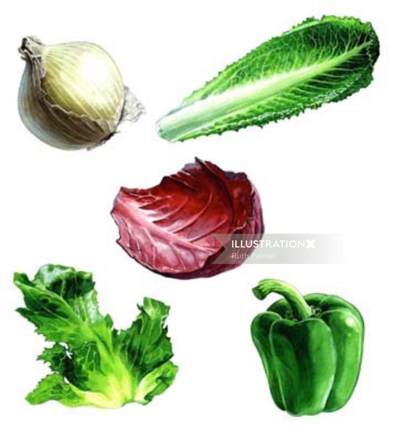 Different vegetables art