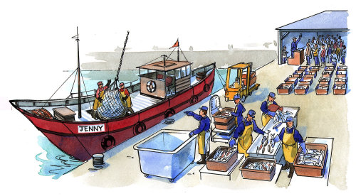 People at fishing harbour