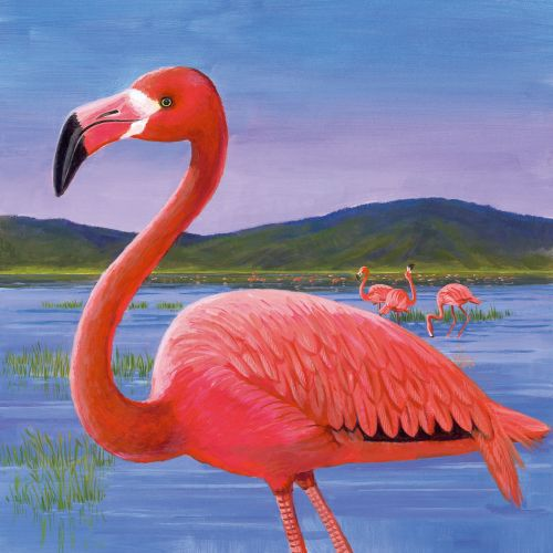 Red crane in lake