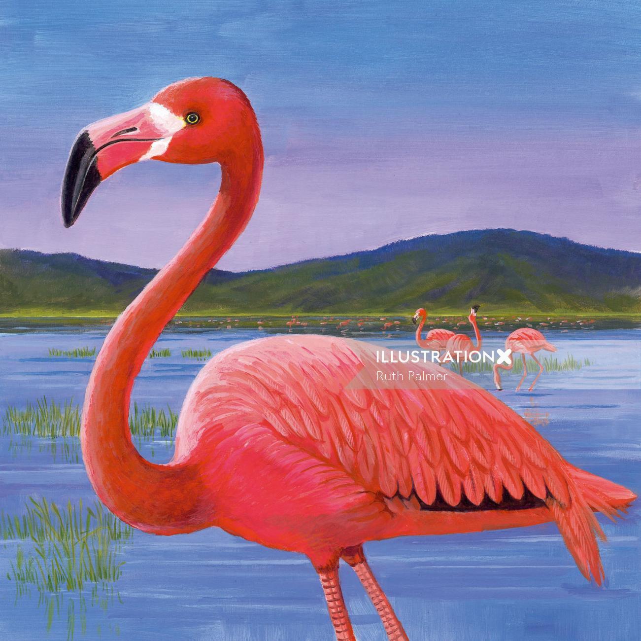 Red crane in lake