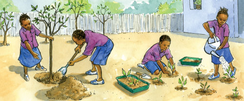Art of School garden