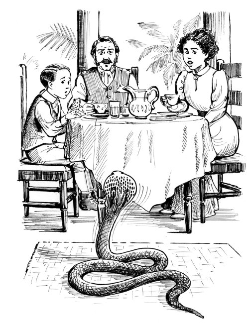 Breakfast with cobra