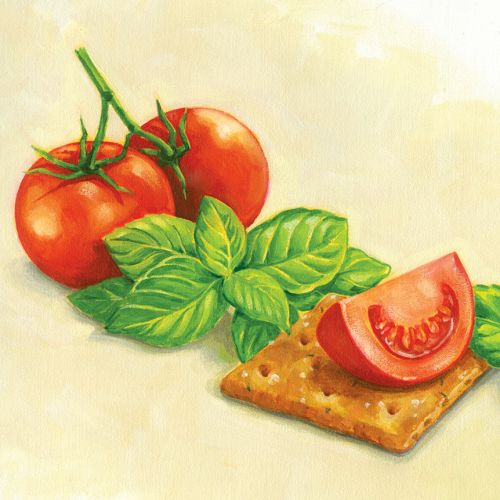 Illustration of Tomatoes and basil