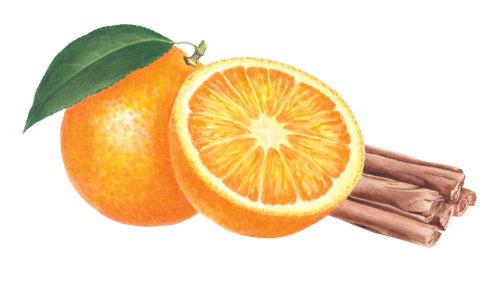 Abstract illustration of Orange and Cinnamon