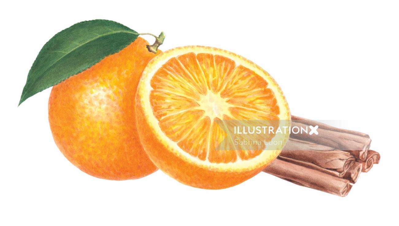 Orange and cinnamon (Citrus aurantium - Cinnamomum verum)