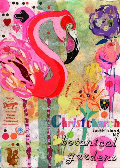 Ilustração do pássaro cisne por Sarah Beetson