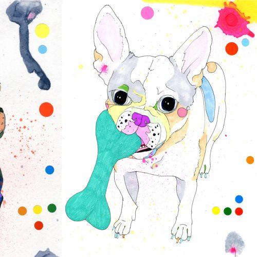 French Bulldog illustration by Sarah Beetson