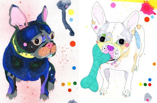 Ilustração do Bulldog Francês por Sarah Beetson