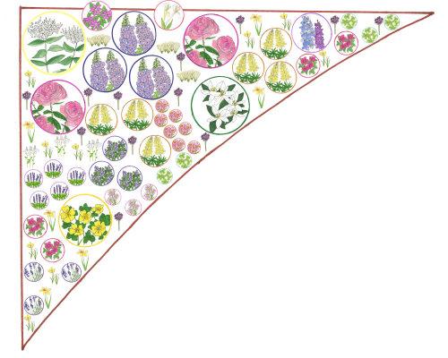 Ilustração de plantas de flor por Sarah Beetson