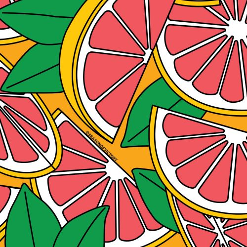 Citrus fruit illustration for packaging design flavored drinks