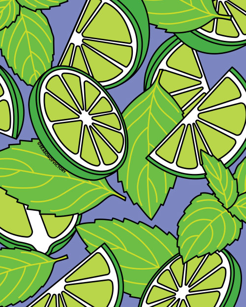 Lime mint illustration for Sparkling Water Packaging