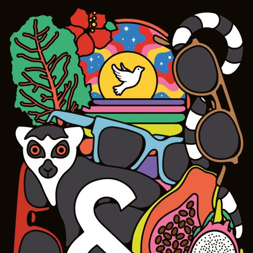 sunglasses, eyeglasses, optical glasses, flowers, lemur, zoo, animals, fruit, travel, holiday, vacat