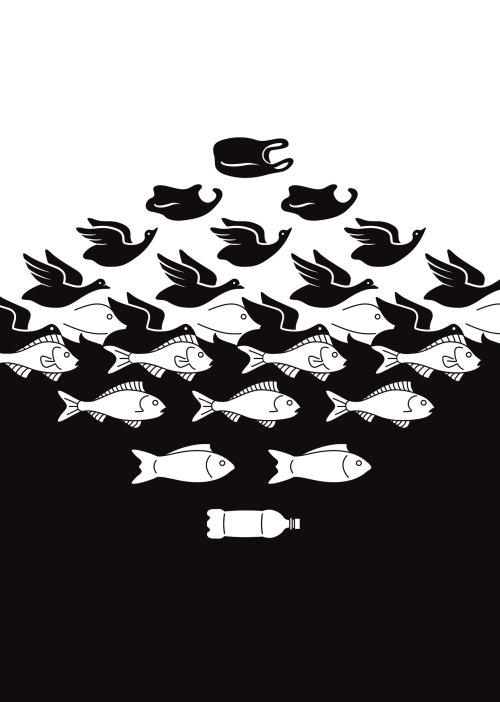 Black and white Fish and birds