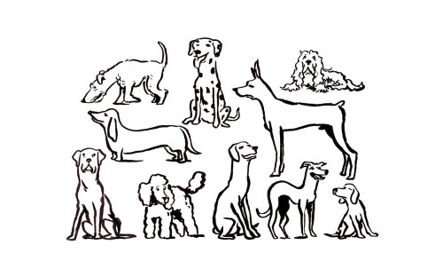 Black and white animals line drawing