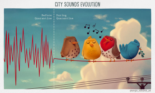 City sound evolution before and during quarantine time