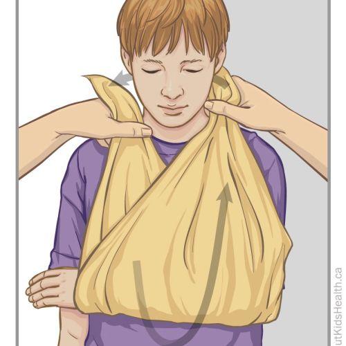 Shelley Chen International medical illustrator. Canada