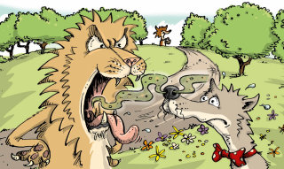Humorous Illustration of Lion and Wolf