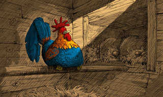 Flat colour illustration for a Rooster cock