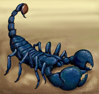 Sci-fi illustration for a Scorpion