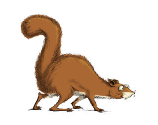 Humourous cartoon squirrel
