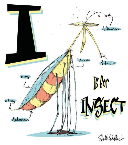 Illustration des insectes | Galerie de style humoristique