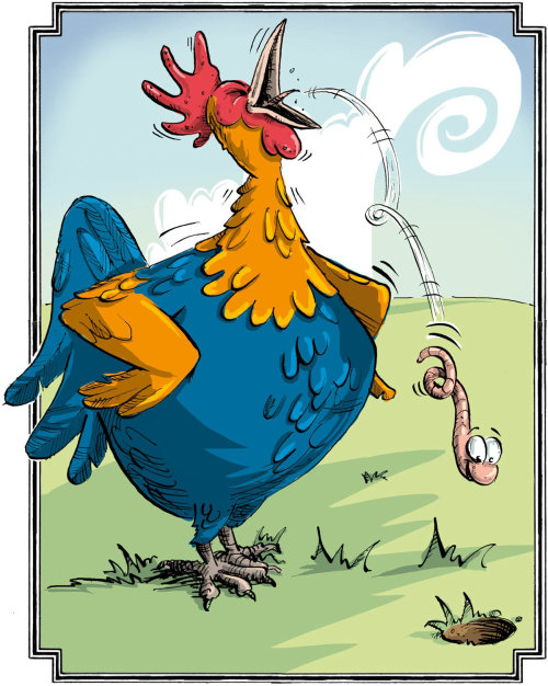 Rooster illustration | Humour style gallery