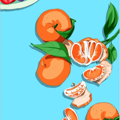 Food & Drink illustration of oranges and blue berries