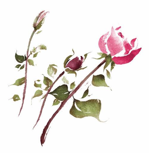 Fleurs roses en vrac