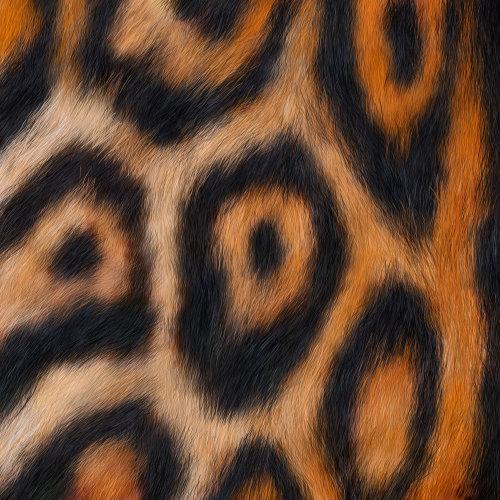 Animals Jaguar fur