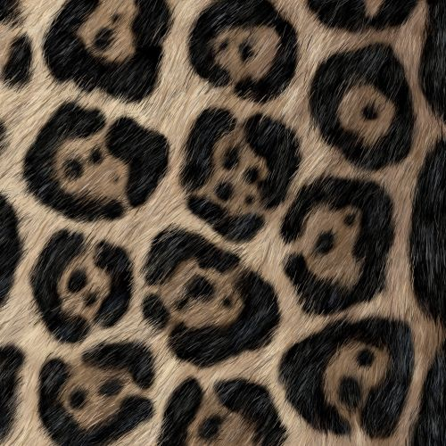 Animals Up close detail of Jaguar fur.