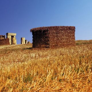 Stonehenge with hay stacks illustration