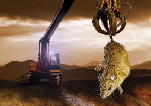 Mouse caught by mechanical arm illustration by Steinar Lund