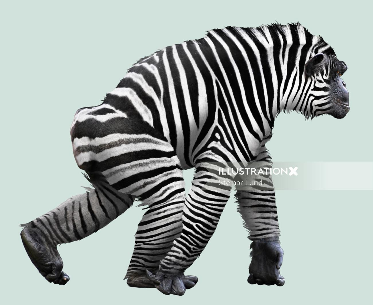 Hybrid between zebra and chimp illustration by Steinar Lund