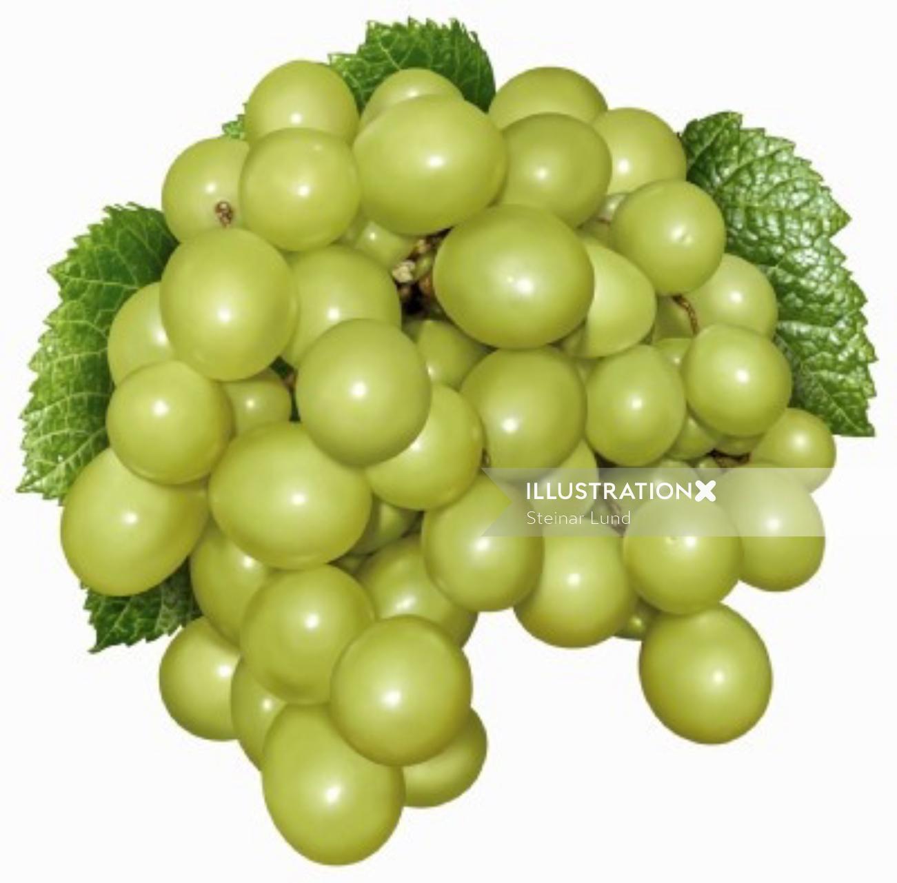 Photorealistic illustration of green grapes